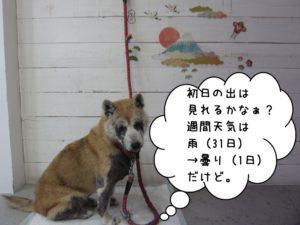 おすまし富士山柴犬