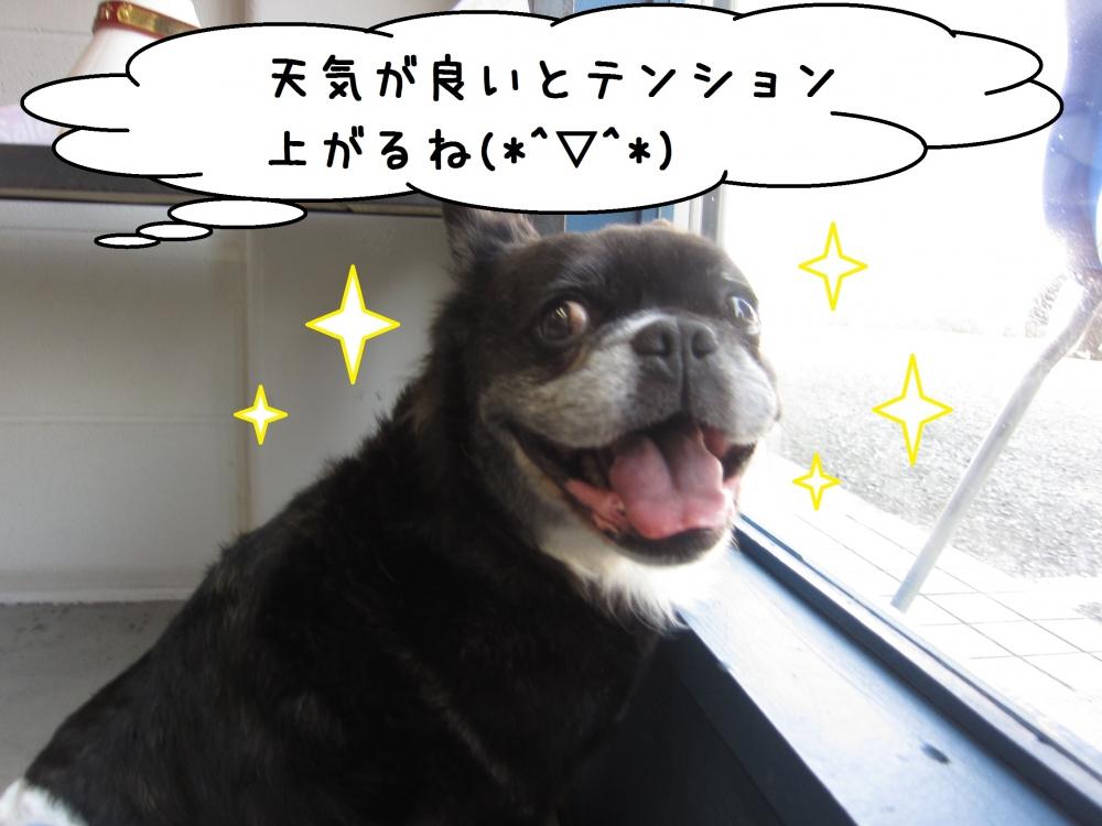 笑顔ミックス