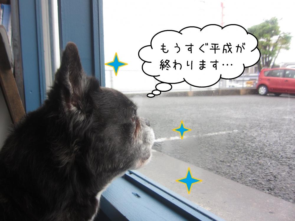 窓際ミックス