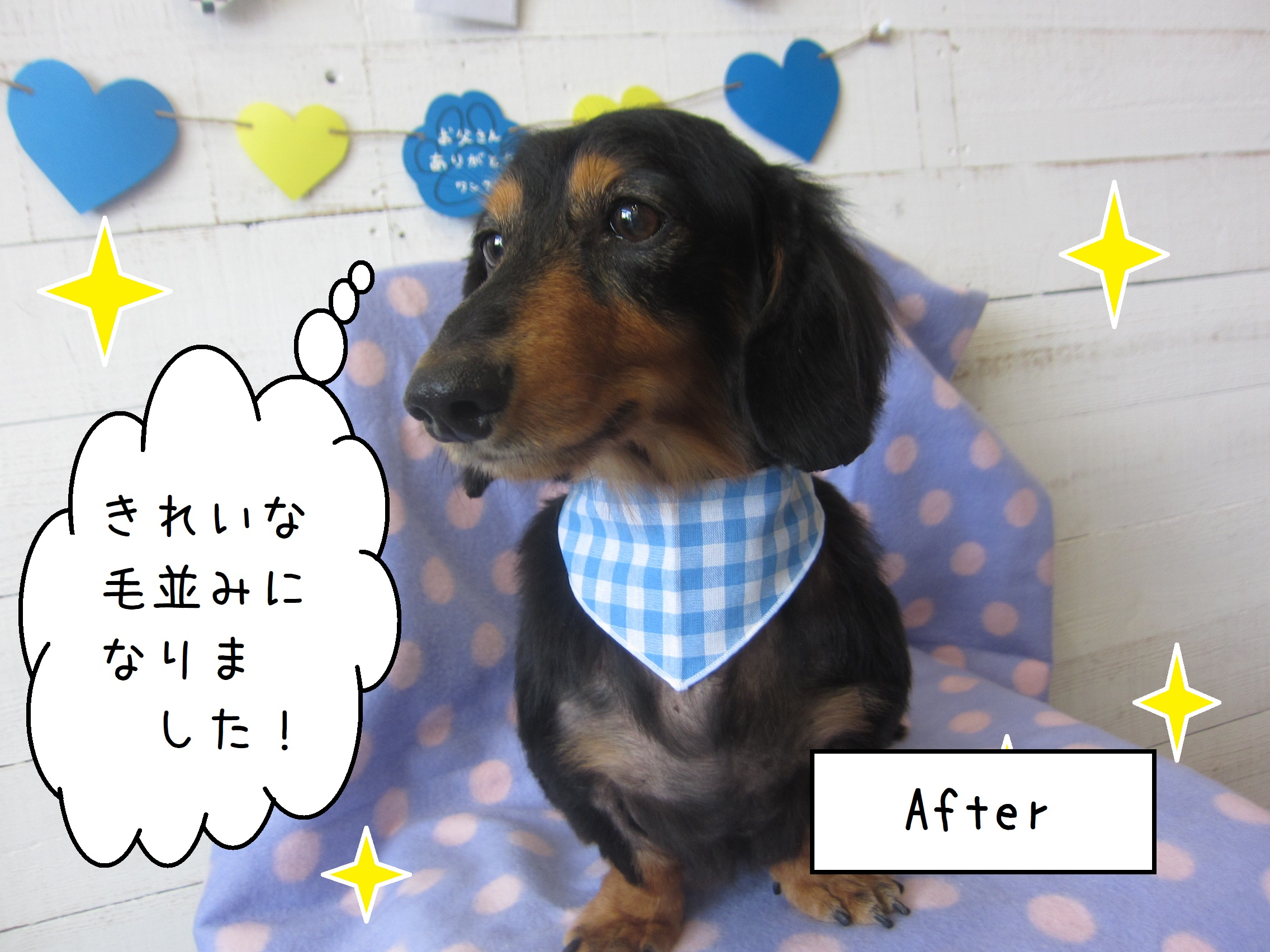 Afterダックス