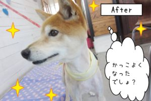 afterミックス