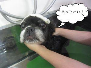 お風呂ミックス